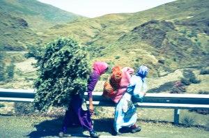 Akmed roadtrip survivors
