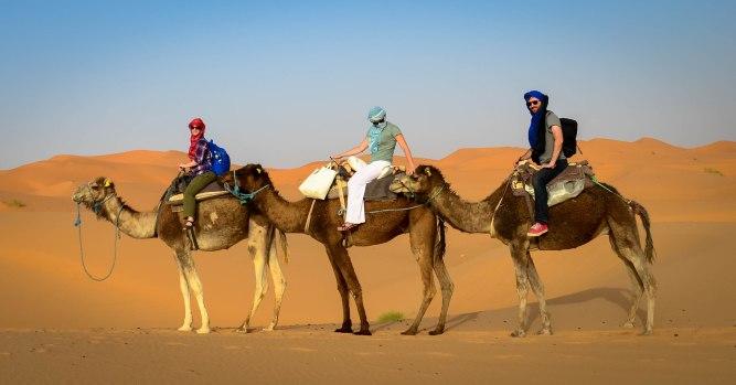 Sahara Desert-62