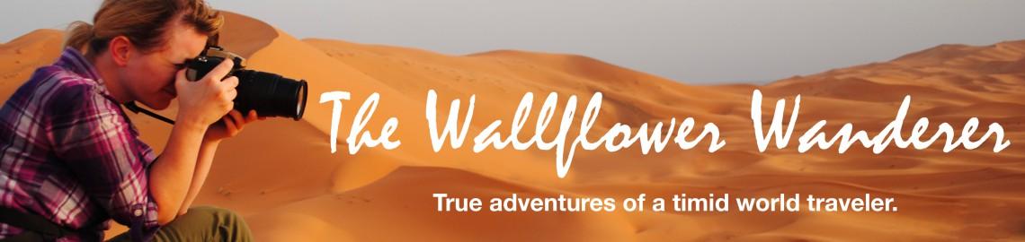 the taj enduring love a photo essay the wallflower wanderer the wallflower wanderer