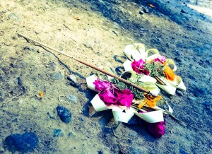 Ubud Flower Offering-2