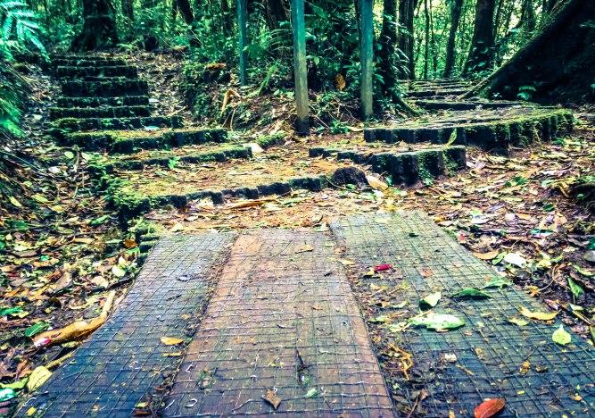 2 paths-1