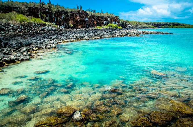 Galapagos-116