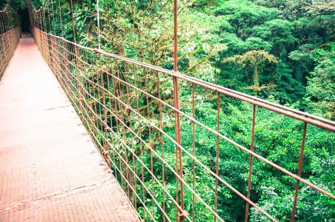 Monteverde-92