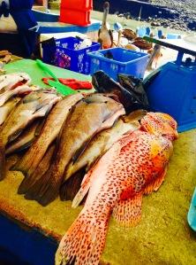Puerto Ayora Market Fish